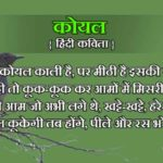 birds poem in hindi